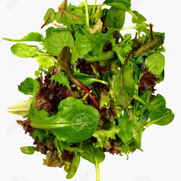 3797911-isolated-mixed-baby-leaves-salad-Stock-Photo-salad-lettuce-spinach